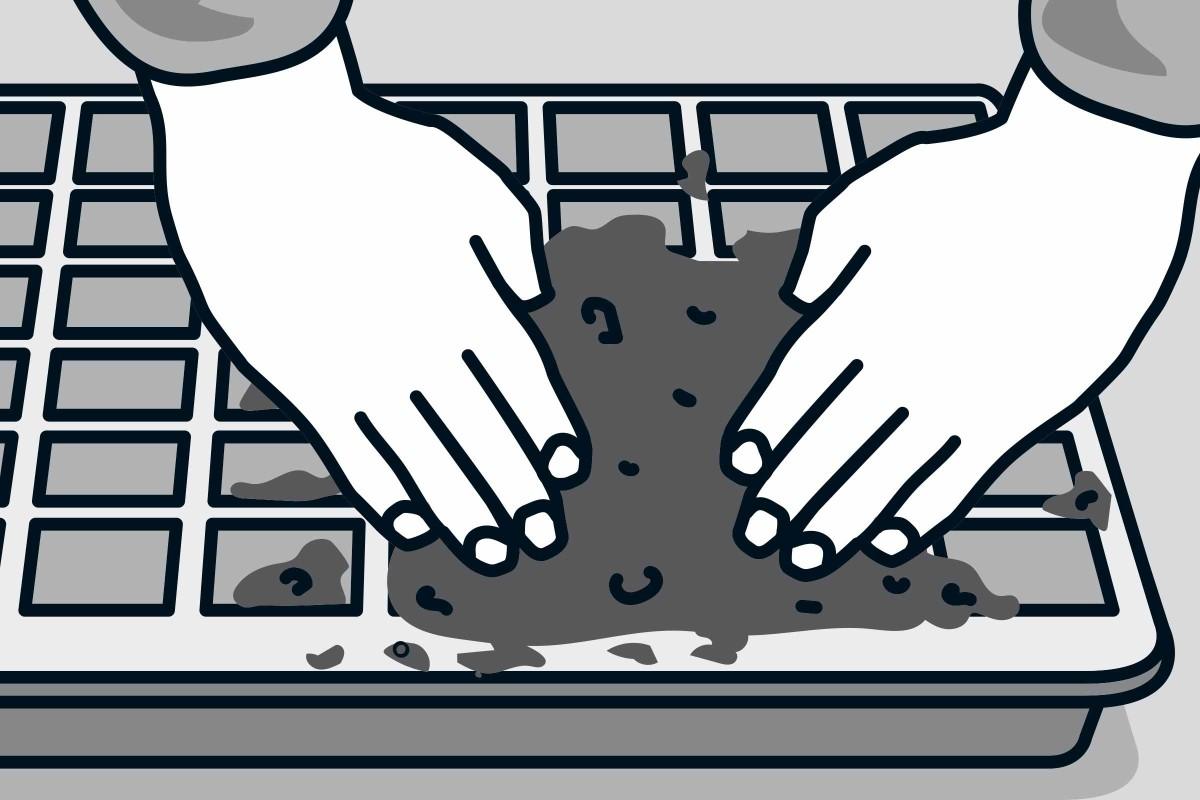 1. Remplir un bac de terre et l'étiqueter