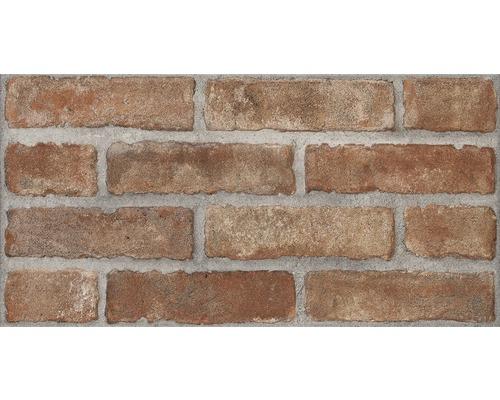 Carrelage Mural Brick Rouge 31x62 Cm Acheter Sur Hornbach Ch