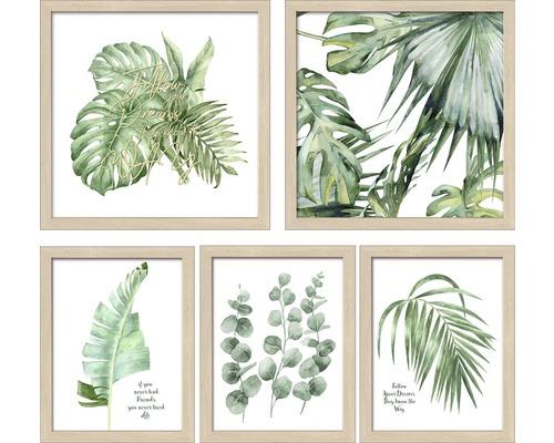 Ensemble de tableaux encadrés Collage GreenPlantColl 5 pièces
