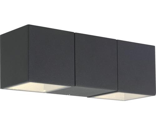 Applique extérieure LED Daveen 5.6W 450lm anthracite