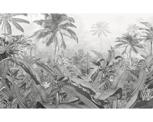 Papier peint photo intissé P013-VD4 Amazonia Black and White