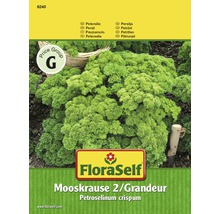 Petersilie Mooskrause 2 Grandeur Kräutersamen FloraSelf®