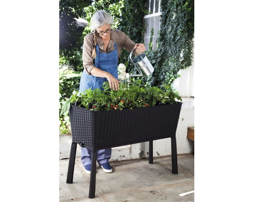 Hochbeet Easy growing, 114x49.3x75.7 cm anthrazit
