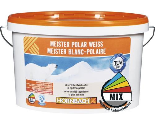 Peinture murale Meister blanc polaire dans le coloris de votre choix A 10l