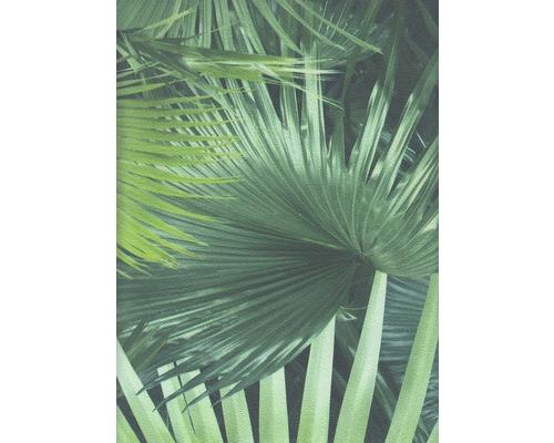 Vliestapete 524901 Crispy Paper Palmenblätter grün