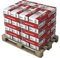 BAUMIT Kalkzementputz Unter- und Oberputz für Schweres Mauerwerk für innen und aussen 25 kg