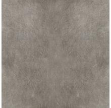Carrelage de sol en grès cérame fin Poseidone Taupe 05, 60x60 cm